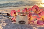 Milkhouse Candles TIKI BEACH FLOWER Cream Jars