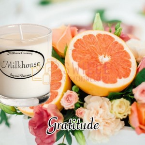 Milkhouse Candles GRATITUDE Shot