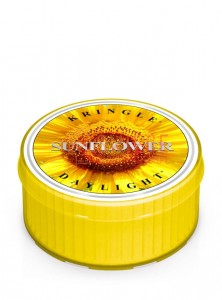 Kringle Candle Sunflower Sunrise Coloured DayLights Słonecznik