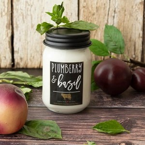 Milkhouse Candles PLUMBERRY & BASIL Mason Jar