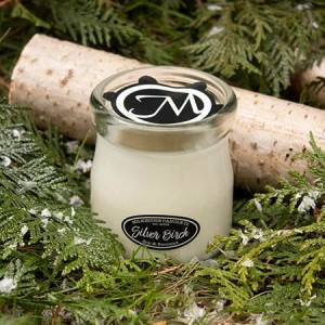 Milkhouse Candles SILVER BIRCH Cream Jar
