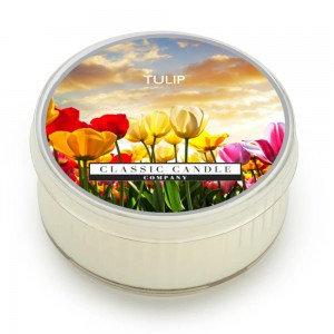 Classic Candle TULIP SOY MiniLight