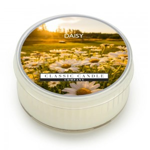 Classic Candle DAISY SOY MiniLight