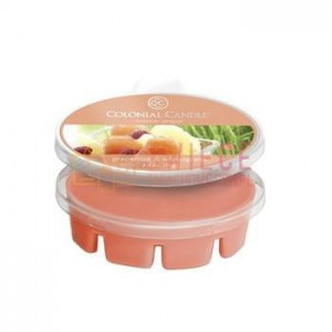 Colonial Candle Simmer Snaps GRAPEFRUIT & WHEATGRS