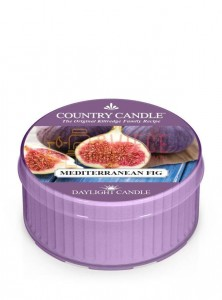 Country Candle MEDITERRANEAN FIG DayLights