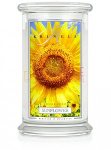 Kringle Candle Sunflower Sunrise Large 2 Wick Classic Słonecznik