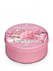 Country Candle CHERRY BLOSSOM DayLights