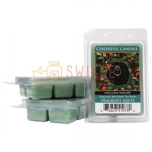 Cheerful Candle Welcome Wreath Wosk