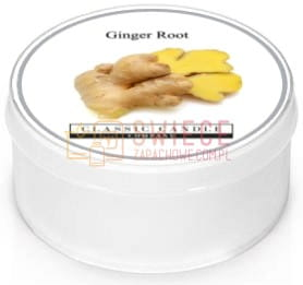Classic Candle GINGER ROOT SPICE RANGE MiniLight