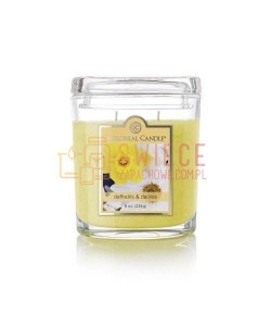 Colonial Candle Medium Jar DAFFODILS AND DAISES