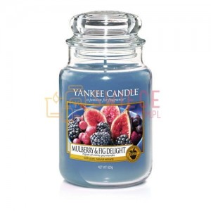 Yankee Candle MULBERRY & FIG DELIGHT Słoik Duży