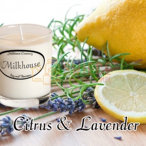 Milkhouse Candles CITRUS & LAVENDER Shot