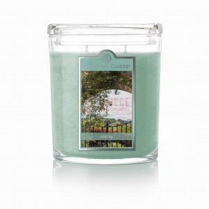 Colonial Candle Large Jar WILD IVY