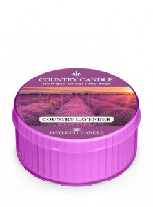 Country Candle COUNTRY LAVENDER DayLights