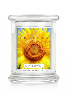 Kringle Candle Sunflower Sunrise Medium 2 Wick Classic Słonecznik