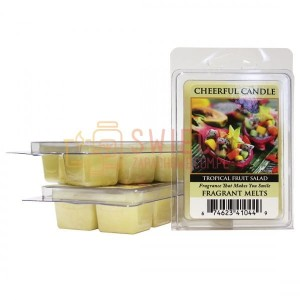 Cheerful Candle Tropical Fruit Salad  Wosk