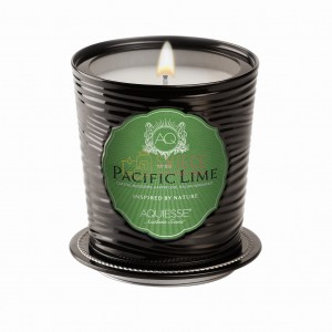 PACIFIC LIME ~ 11 oz Large Soy LUXE Tin Candle